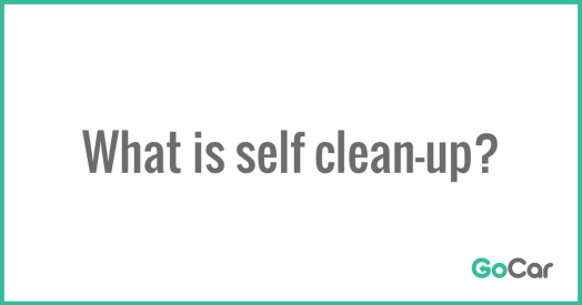 1200px × 630px – Self Clean-Up (1).png