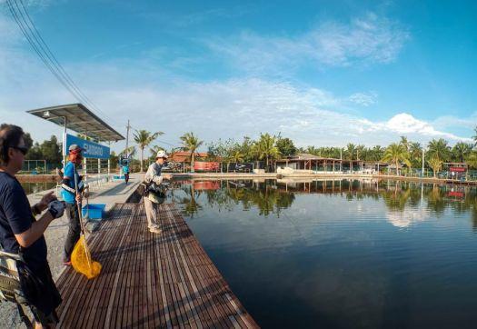 jurassic-sw-pond-fly-fishing-malaysia-150504_8553